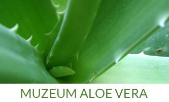 aloeplus-menu-02